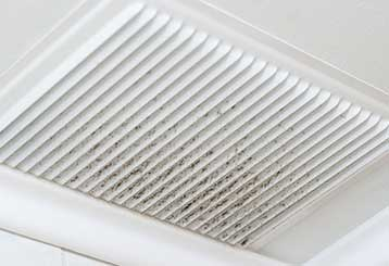Is Mold in My Air Ducts Dangerous? | Air Duct Cleaning Los Angeles, CA
